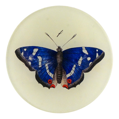 A four inch round decoupage plate titled Deep Blue Butterfly