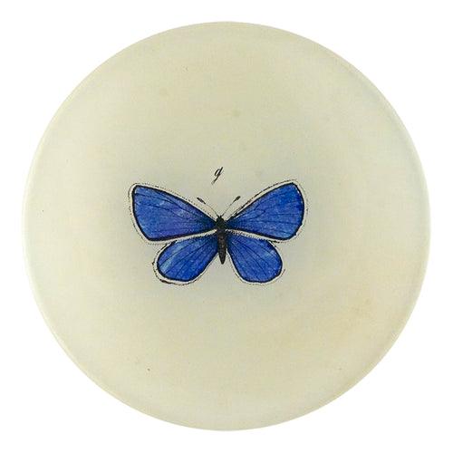 A four inch round handmade decoupage plate titled Petit Blue Butterfly