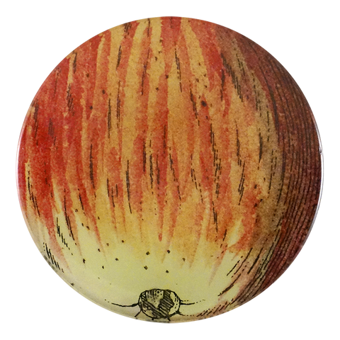 Numbered 18th c. Fruits - Apple 124
