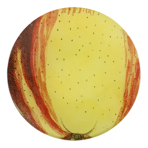 Numbered 18th c. Fruits - Apple 125