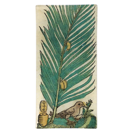 Palm and Bird