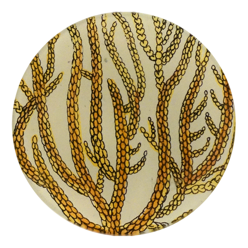 Yellow Branch Coral