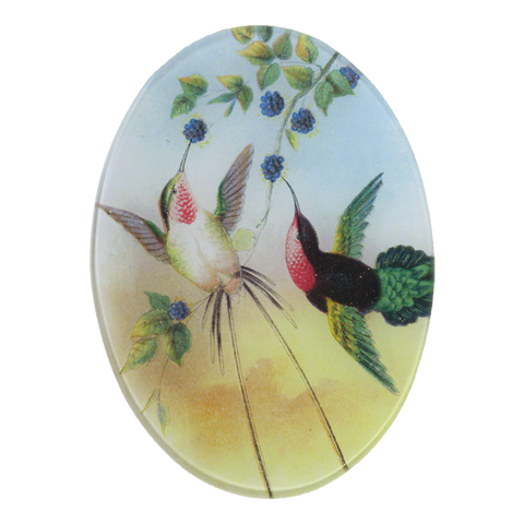 Pair Hummingbirds