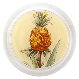Pineapple in a Pot