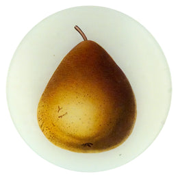 Monarch Pear (Fruits)