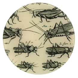 Moufeti (B&W Insects) - FINAL SALE
