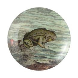 An eight inch round handmade decoupage sale item titled Frog #1