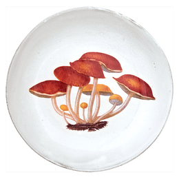 Agaric Amer Soup Bowl