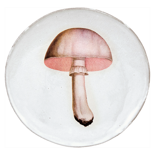 White Champignon Comestible Dinner Plate