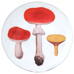 Red Mushrooms Dinner Plate