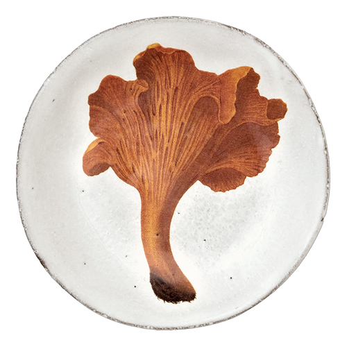 Large Chanterelle Comestible Plate
