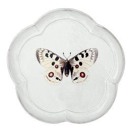 Apollo Butterfly Dinner Plate