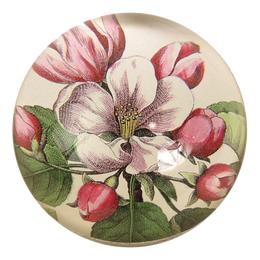 Beach Rose handmade decoupage dome paperweight