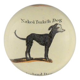 Naked Turkish Dog - SALE