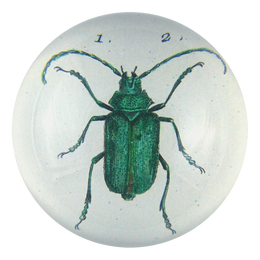 Scarab (Green Beetle)
