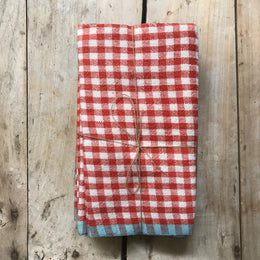 Set of 4 Gingham Napkins in Red & Aqua