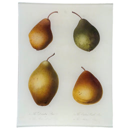 Downton Pear (Fruits)