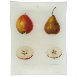 Forelle Pear (Fruits)