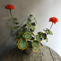 The Green Vase Potted Orange Geranium Plant