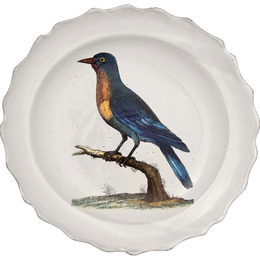 Good-Hope Jay Soup Plate