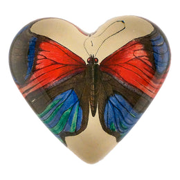 Lepidoptera (Red & Blue Butterfly)