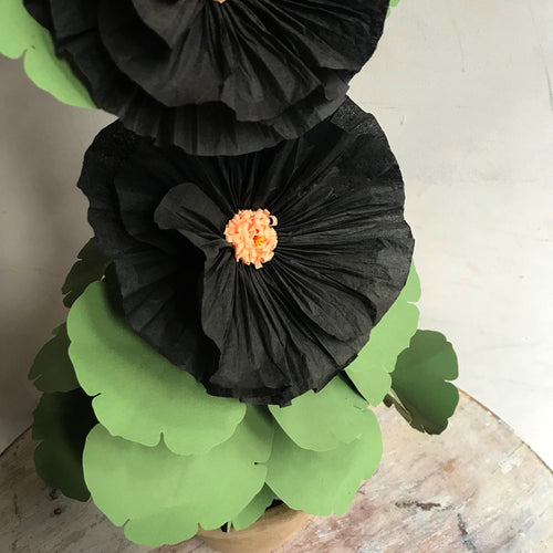 The Green Vase Potted Black Hollyhock