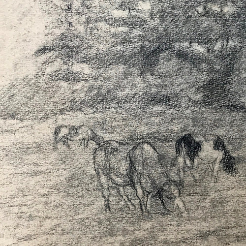 Evert Rabbers Cow Drawing 12