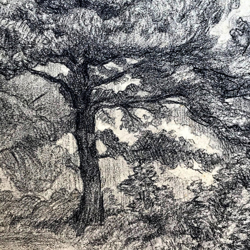Evert Rabbers Landscape Drawing 64