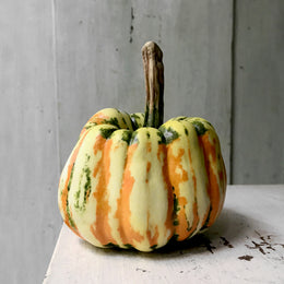 Medium Porcelain Celebration Squash
