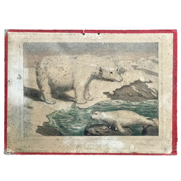 "19th Century French Lithograph ""Ours Blanc, Phoque"" - Polar Bear, Seal"