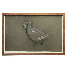 Evert Rabbers Framed Swan Drawing