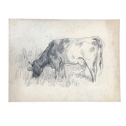 Evert Rabbers Cow Drawing 22