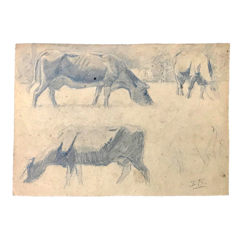 Evert Rabbers Cow Drawing 33