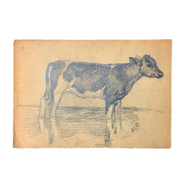 Evert Rabbers Cow Drawing 39