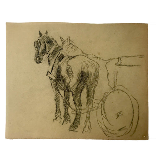 Evert Rabbers Horse Drawing 57