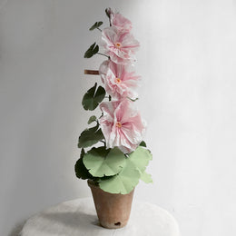 The Green Vase Potted Pink Hollyhock
