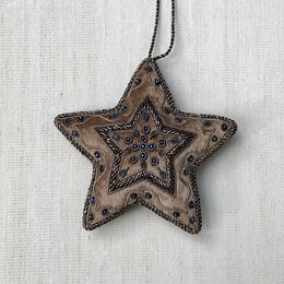 Silver & Champagne Velvet Antique Star Ornament