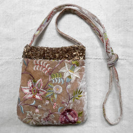 Madame Bovary Embroidered Silk Velvet Crossbody Bag in Taupe