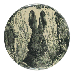 Sepia Rabbit