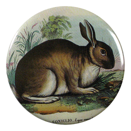 Rabbit available as Pocket Mirror, Magnet, Button Pin or Bottle Opener
