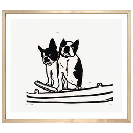 Boston Terrier Pair