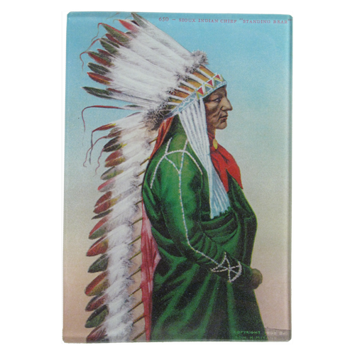 Native American Portrait 2: Chief Standing Bear (Sioux)