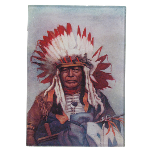 Native American Portrait 4: Chief Black Thunder