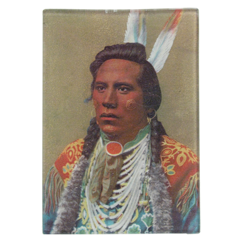 Native American Portrait 8: Two Feathers