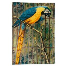 Parrot #2 (Yellow)