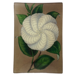 White Camellia - FINAL SALE*