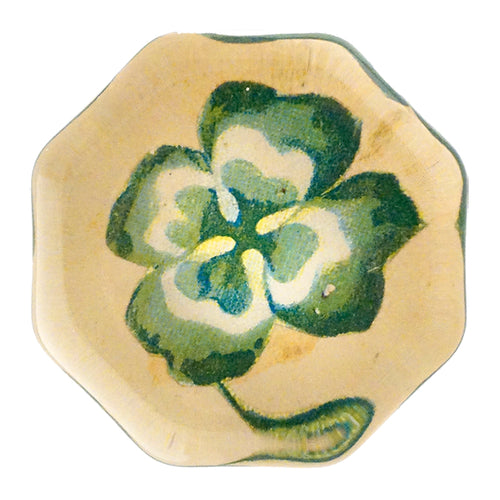 Variegated 4 Leaf Clover