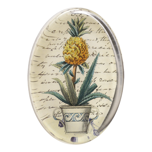 Potted Pineapple