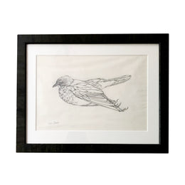 Olga Sears Bird Drawing #2