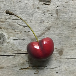 Porcelain Single Cherry